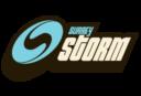 surry-storm